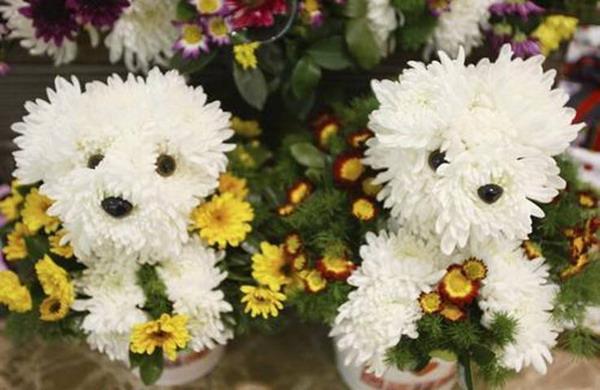 необычный букет цветов