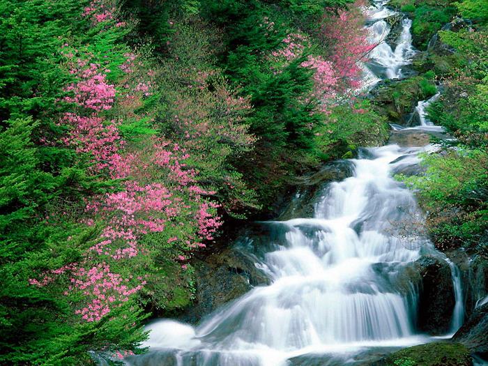 водопад фото 43