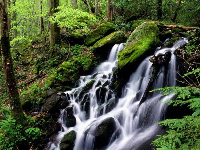 водопад фото 47