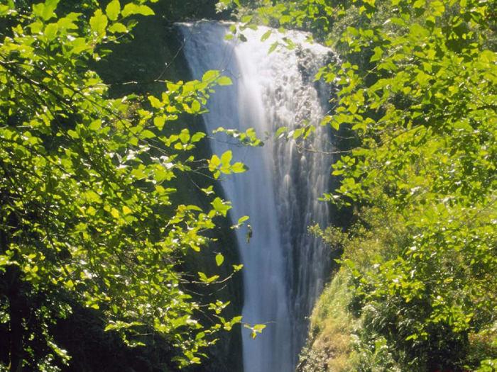 водопад фото 9