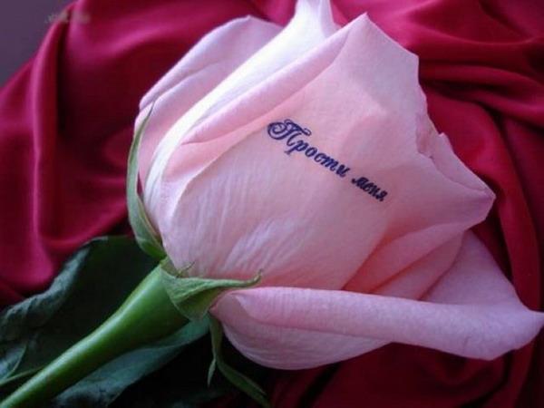 Цветы с надписями марина