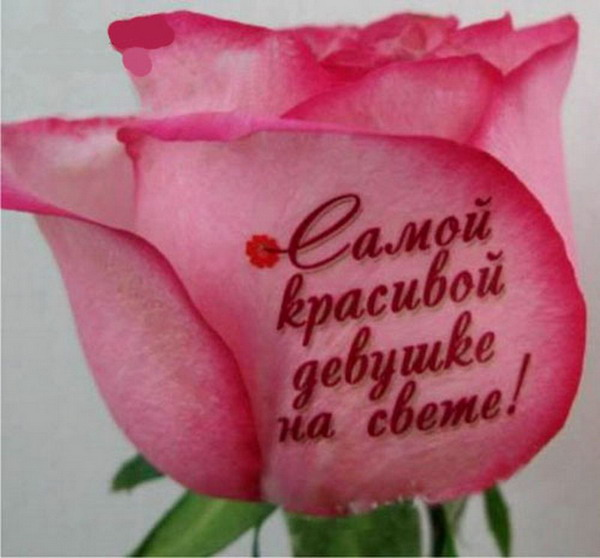 Цветы самой прекрасной - 2